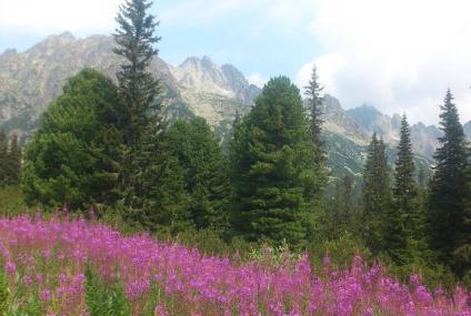 רכס הרי הטטרה